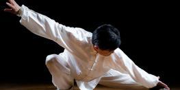 Stage de Tai Ji Quan - Lila Dinard