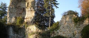 Le bois de Rumignon et le parc du Château