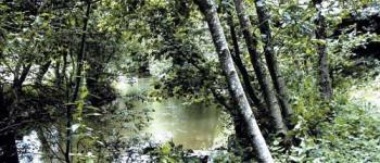 La Vallée du Couesnon