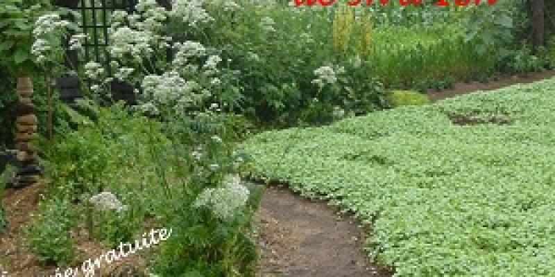 Marché aux plantes à Andel