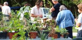 Bourse aux Plantes d'Automne PLOEREN