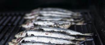 Fête de la sardine SARZEAU