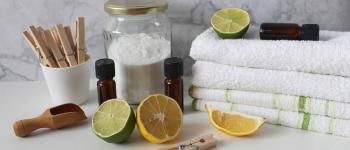 Faire ses produits d\entretien naturels VANNES