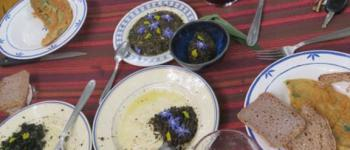 Des herbettes à l\assiette : atelier cueillettes et cuisine LA VRAIE CROIX