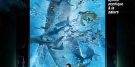 Un après-midi au Japon  Les Enfants de la Mer QUESTEMBERT