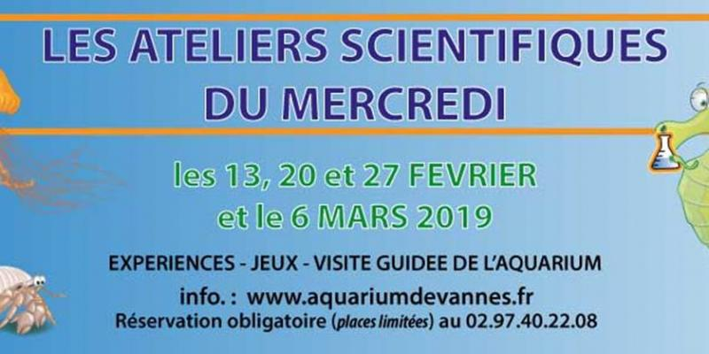 Atelier scientifique : Les abysses