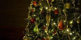 je fais étinceler ma déco de Noël à la Pépiterre SARZEAU