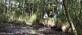 À la découverte des tourbières Sucé-sur-Erdre