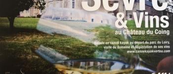 Balade en canoë et visite de château et cave Vertou