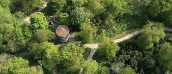 Graine de botaniste amazonien.ne - Atelier à partir de 6 ans Gétigné