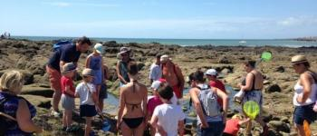 Initiation à la pêche à pied Batz-sur-Mer