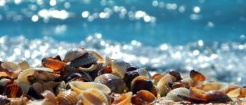 Côte, plage et rochers Batz-sur-Mer