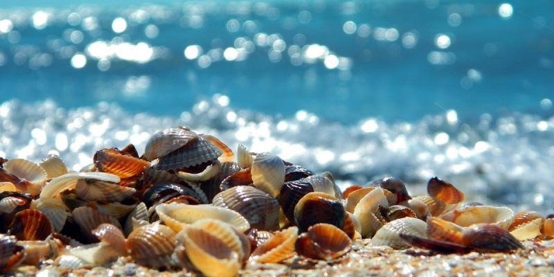 Côte, plage et rochers