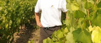 Les Jeudis Vignerons : dégustation de vins des coteaux d'Ancenis Ancenis-Saint-Géréon