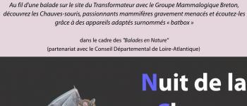Nuit de la Chauve-souris sur le site du transformateur Saint-Nicolas-de-Redon