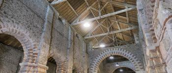 Visite commentée du site de l\abbatiale Déas Saint-Philbert-de-Grand-Lieu