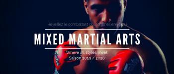 Inscription arts martiaux mixtes Nantes