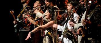 Concert funk, soul, chanson : Cut the alligator Donges