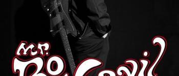 Off des rendez-vous de l\Erdre : Bo Weavil (pulp blues) Nantes