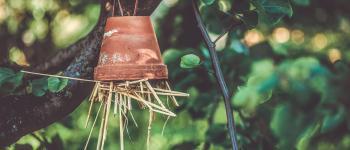 Atelier Hôtels à insectes Saint-Lunaire