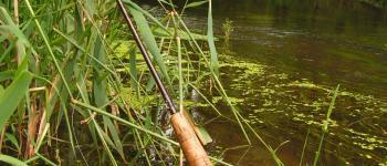 Stage de pêche à la mouche Pabu
