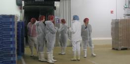 Visite guidée de l'usine Fleury Michon Plélan-le-Grand