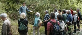 Safari Nature dans la vallée du parfond du Gouët Pordic