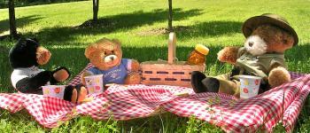 Pique-nique des ours en peluche Île-Tudy