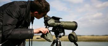Sortie nature - Observation des oiseaux Lanvallay
