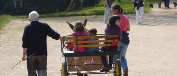Balade en âne Brélès