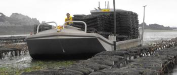 Visite ostréicoles : Les huîtres de Saint-Riom Lanmodez Lanmodez