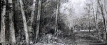 Stage Fusain : nature et création Bégard