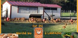 Marché bio à la ferme du Rocher Lanfains