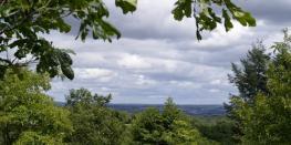 Voyages dans les arbres Brélès