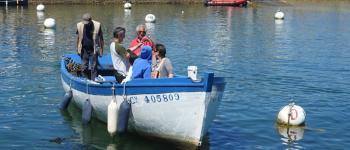 Fête des Marins et Amis du port de Kérity Penmarch