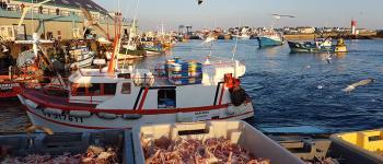 Fête du travailleur de la mer Plobannalec-Lesconil