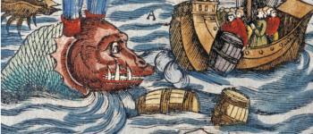 \baleines et cachalots\, des vieux mythes à leur protection Audierne