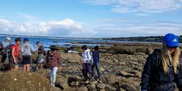 sortie algues - découverte des algues sur l'estran  Fouesnant